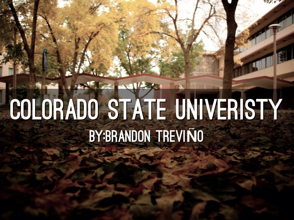 colorado state fort collins application deadline